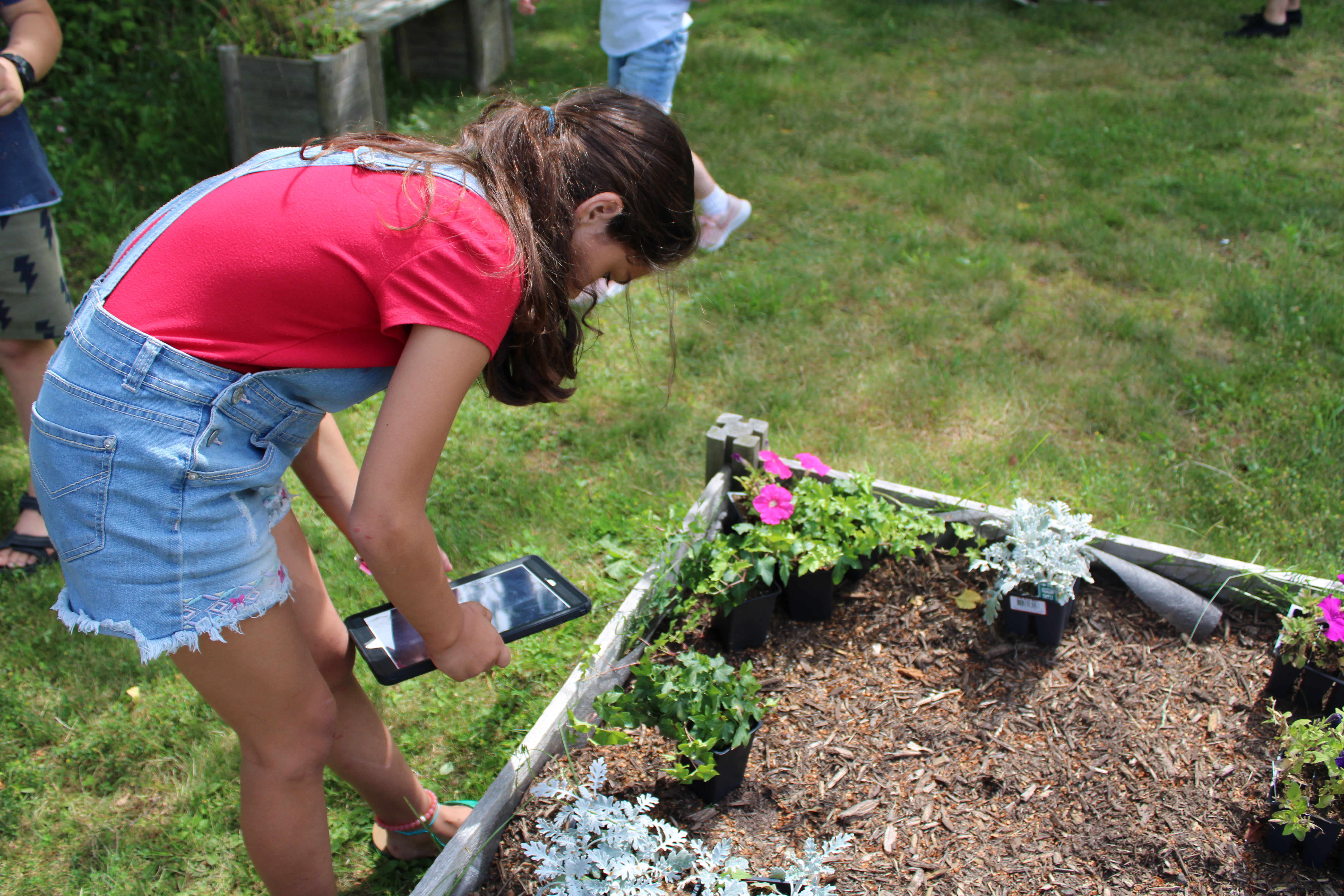 Tree House student using tablet to identify plants in garden bed